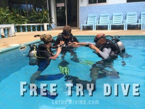 free-try-dive-lotus-diving