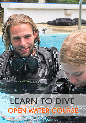 Learn-to-dive-open-water-course