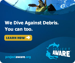 pa_badge_300x250_DiveAgainstDebris_we