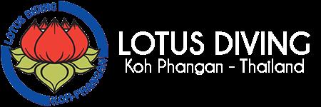Lotus Diving * Koh Phangan