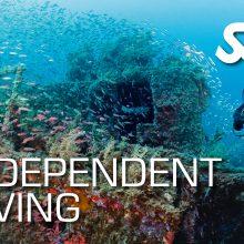 SSI Independent Diver